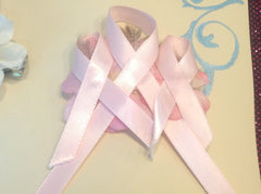 """Save The Boobies"" Breast Cancer Awareness Barretts Set of 2 CFL014"