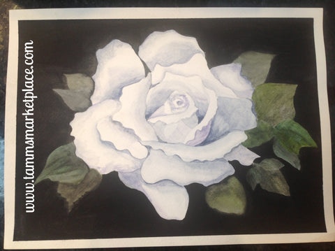 "Original Watercolor painting White Rose with black background 15""x11"" QWA001"