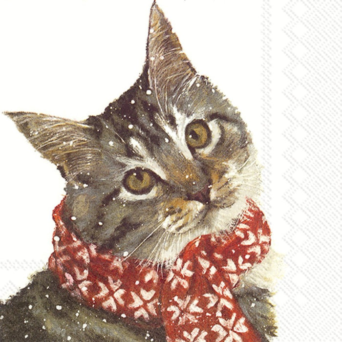 Paper Cocktail Napkins, Winter Kitty