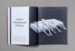 A New Type of Imprint – Volume 11 – Inside 04