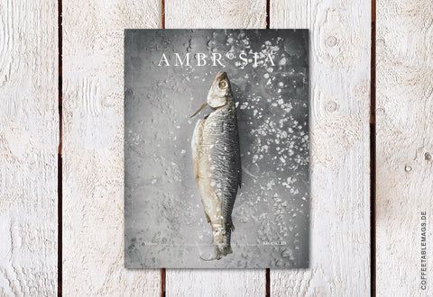 Ambrosia Magazine – Volume 3: Brooklyn