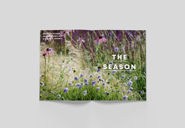 Bloom Magazine – Issue 03: Summer – Inside 07