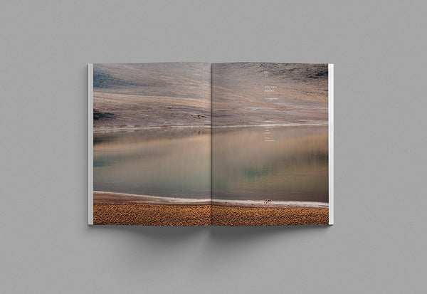 Cereal – Volume 20 – Inside 04