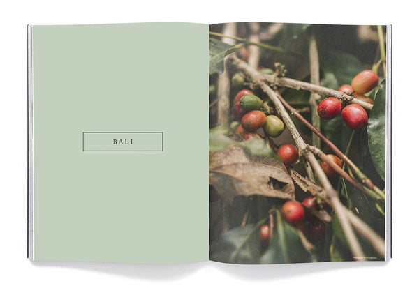 Drift – Issue 9: Bali – Inside 01
