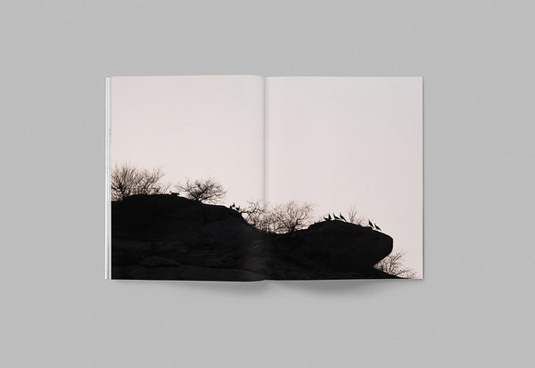 Faune – Volume 01 – Inside 02
