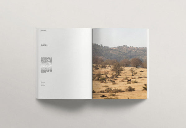 Faune – Volume 02 – Inside 04