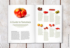 Coffee Table Mags / Independent Magazines / Magazine F – Issue 04: Tomato – Inside 02