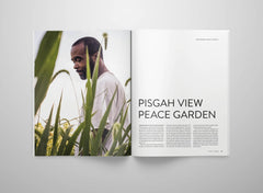 The Collective Quarterly – Issue 4 : Pisgah – Inside 08