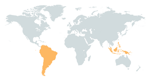 South America & Pacific Islands