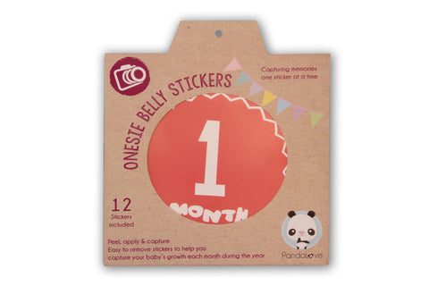"""Boys"" - Babygrow Month Stickers"