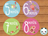 """Flowers"" - Babygrow Month Stickers"