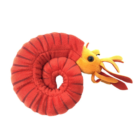 Plush: Ammonite