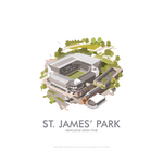 St James' Park by Dave Thompson Print