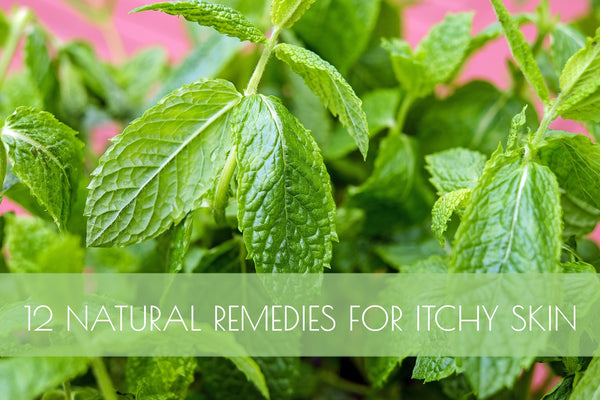 12 Natural Remedies for Dry, Itchy Skin