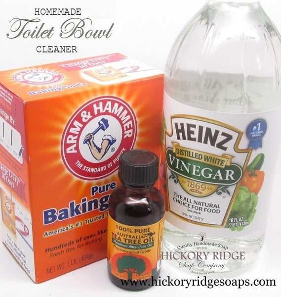 DIY Homemade Toilet Bowl Cleaner