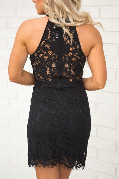 Halter Neck Lace Bodycon Dress Black