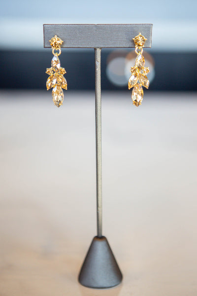 Sawyer- Teardrop Stone Earring