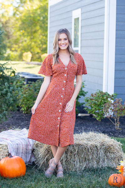 A True Beauty-Polka Dot Button Down Midi Dress
