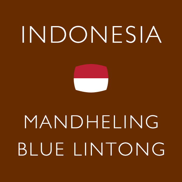 Indonesia Mandelins, Burlington, Indonesia