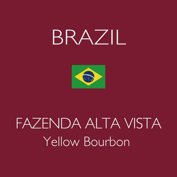 Brazil Fazenda Alta Vista Farm, Yellow Bourbon Natural