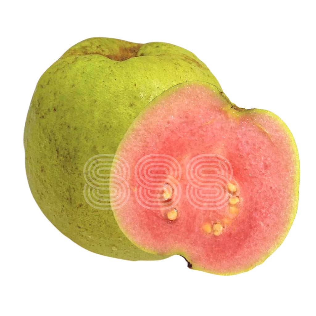Vietnam Pink Guava (3pc, Small-Medium)