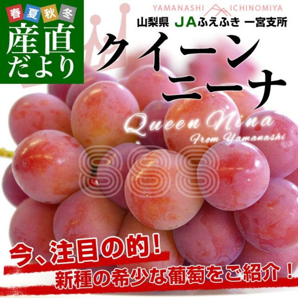 Yamanashi Queen Nina Seedless Grapes (550-600g)