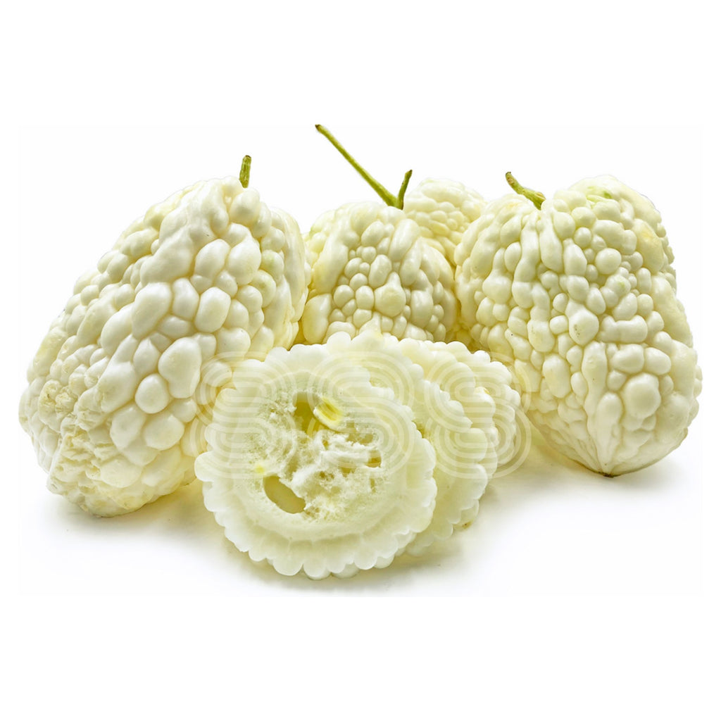 Taiwan White Bitter Melon (3pc)