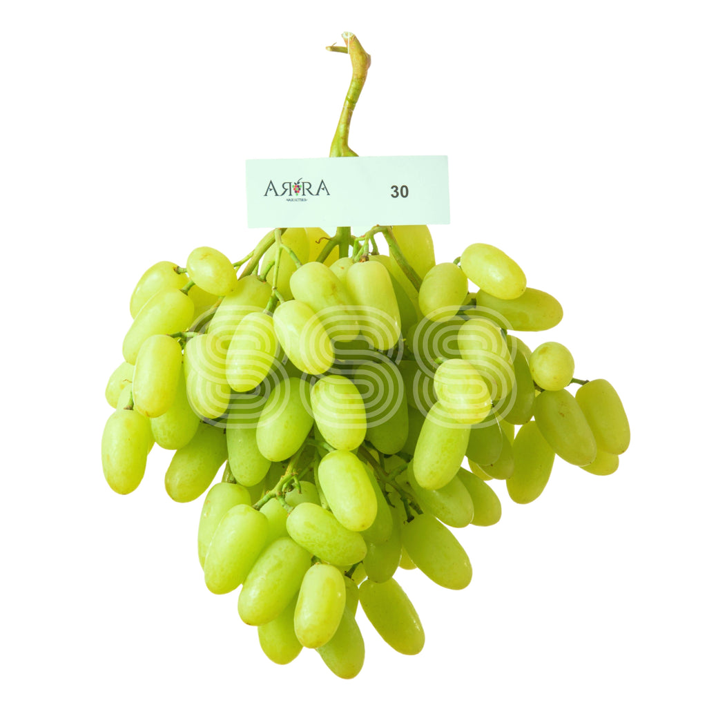USA Sugar Drop Seedless Grapes