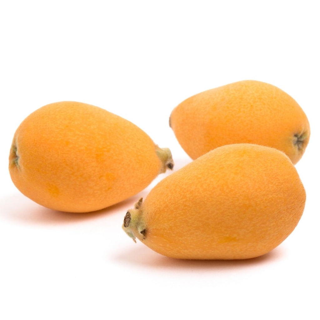 Japan Nagasaki Loquat (5pc)