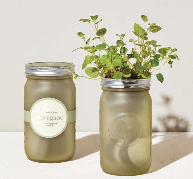 The Oregano Garden Jar in White