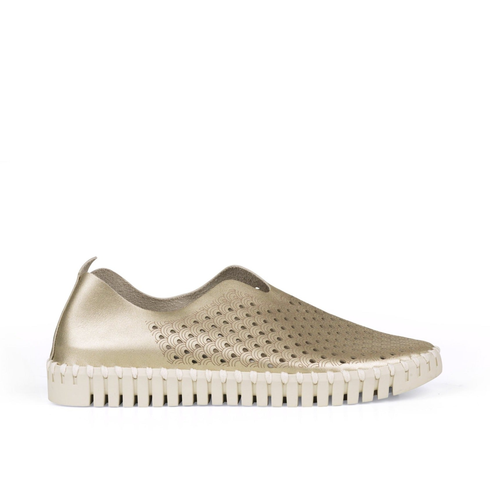 Tulip Metallic 3576 - The On-The-Go Slip-On in Platino