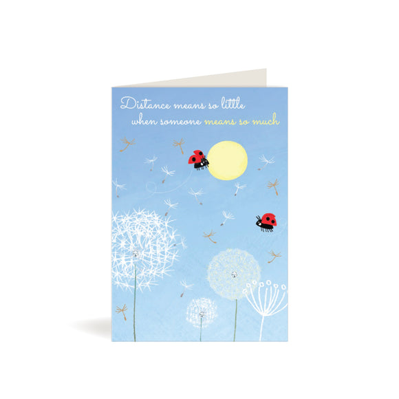 Greeting Card - Thinking of You - Dandelions & Ladybirds