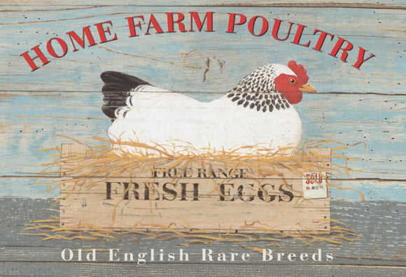 Home Farm Poultry - Fresh Eggs