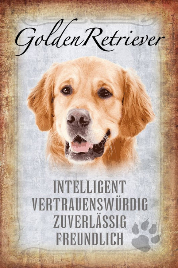 Golden Retriever - intelligent freundlich