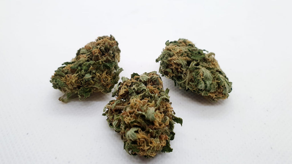 TROPICAL CBD 15%
