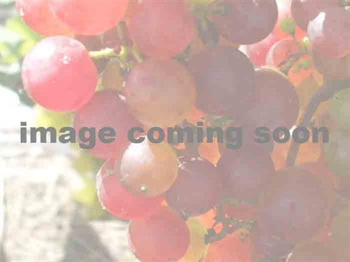 Tuscany Red Grape