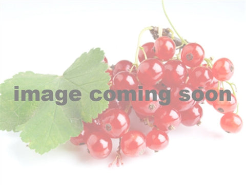 Currant - Cherry Red