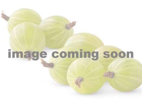 A Special Gooseberry - CANADIAN - new for 2017