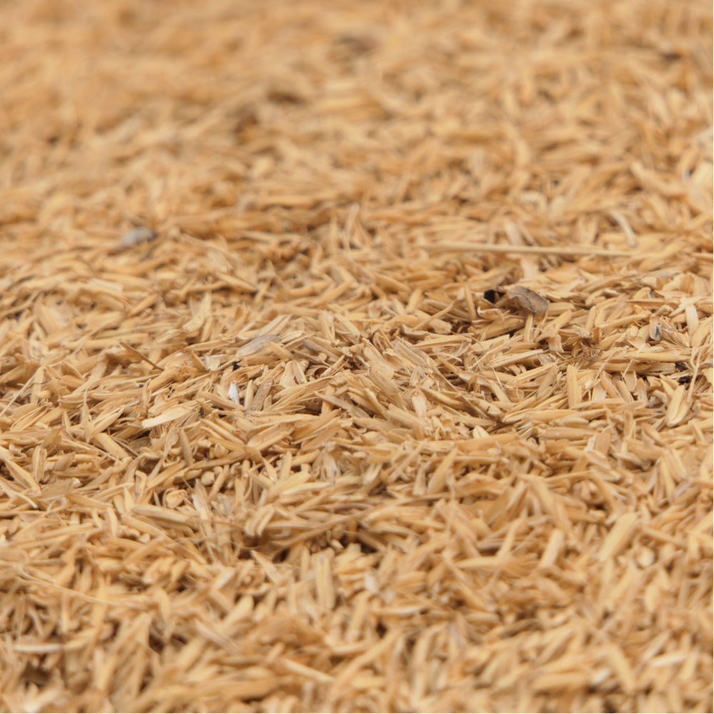 Load image into Gallery viewer, Long Grain Brown Rice (1kg)