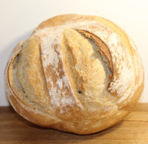 Plain Sourdough