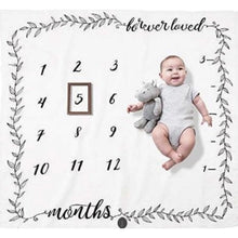 Load image into Gallery viewer, Baby Milestone Photo Props