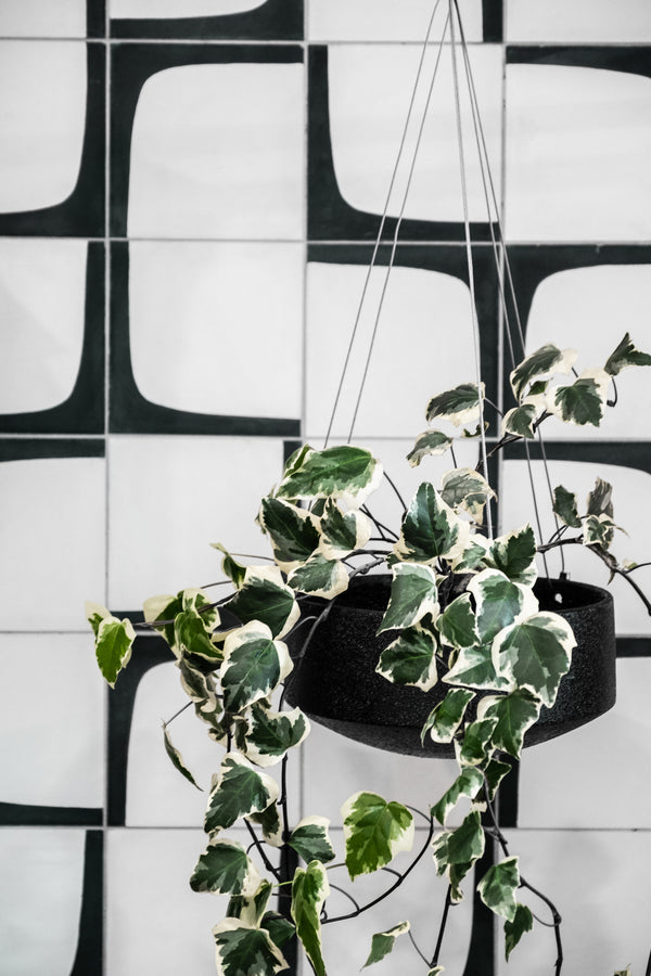 ZAKKIA | Embers Hanging Planter - Large Charred