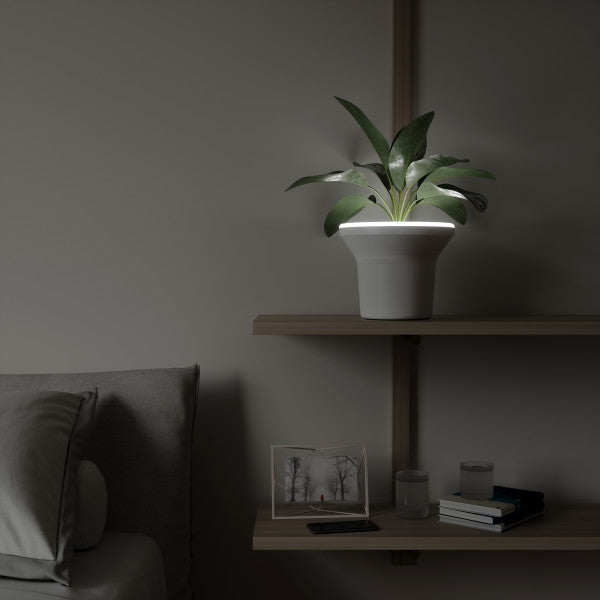 UMBRA | ORA ILLUMINATED PLANTER