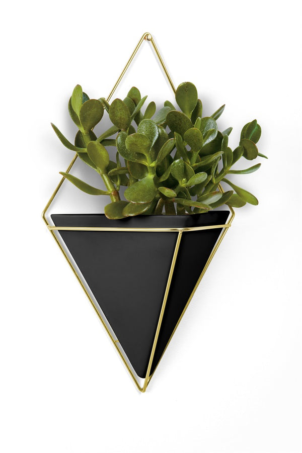 Umbra | Trigg Wall Vessel - Black