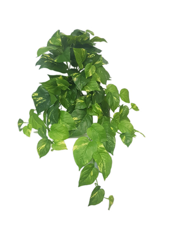 Real Touch Variegated Pothos Bush