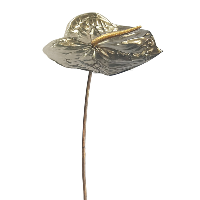 Metallic Anthurium Pewter