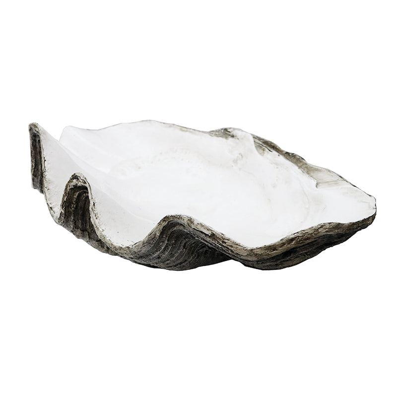 Resin Clam Shell