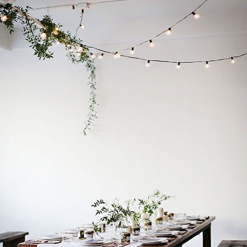 Festoon Lights - Indoor / Outdoor