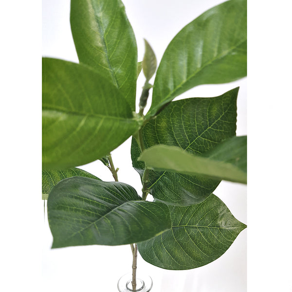 Gardenia Leaf Spray