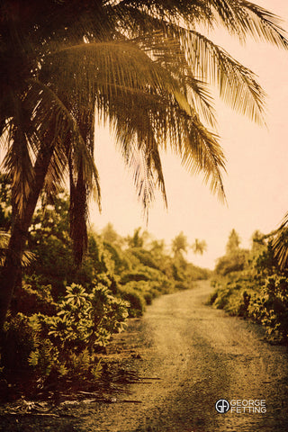 A winding road through one of Tahiti's countless beautiful islands